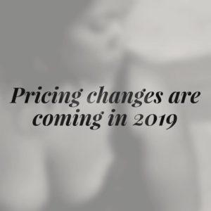 money talks boudoir by paula pricing